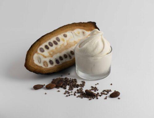 L'altra faccia del frutto del cacao