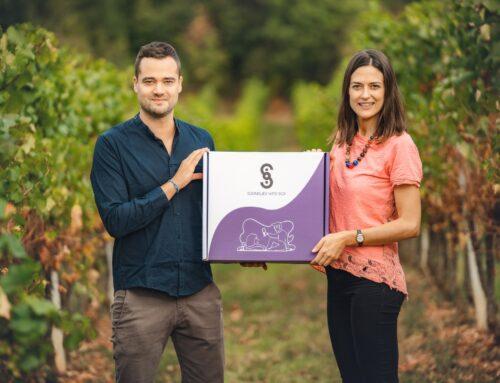 Sommelier Wine box: la degustazione è su misura